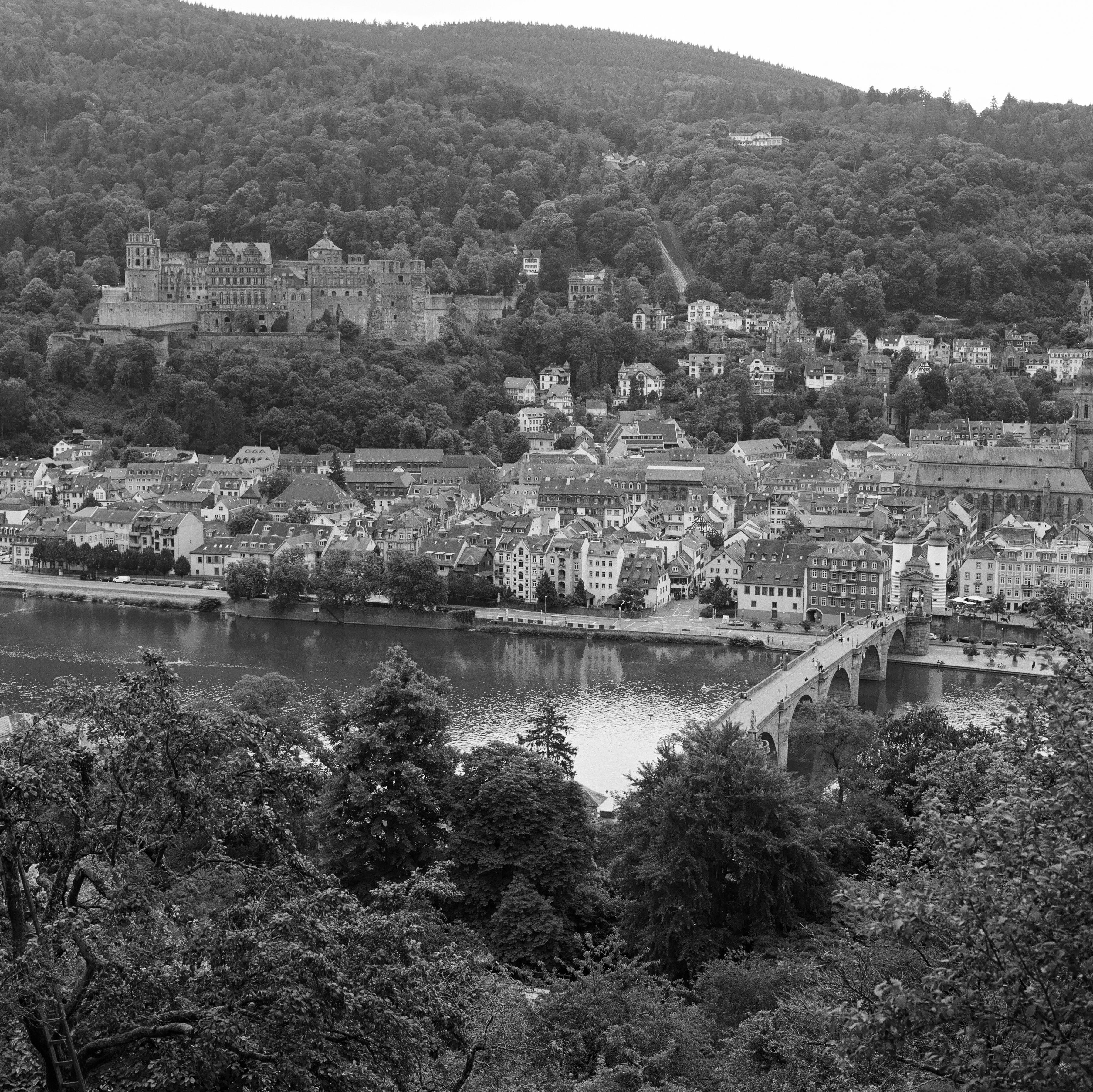 Heidelberg - Blick vom Philosophenweg