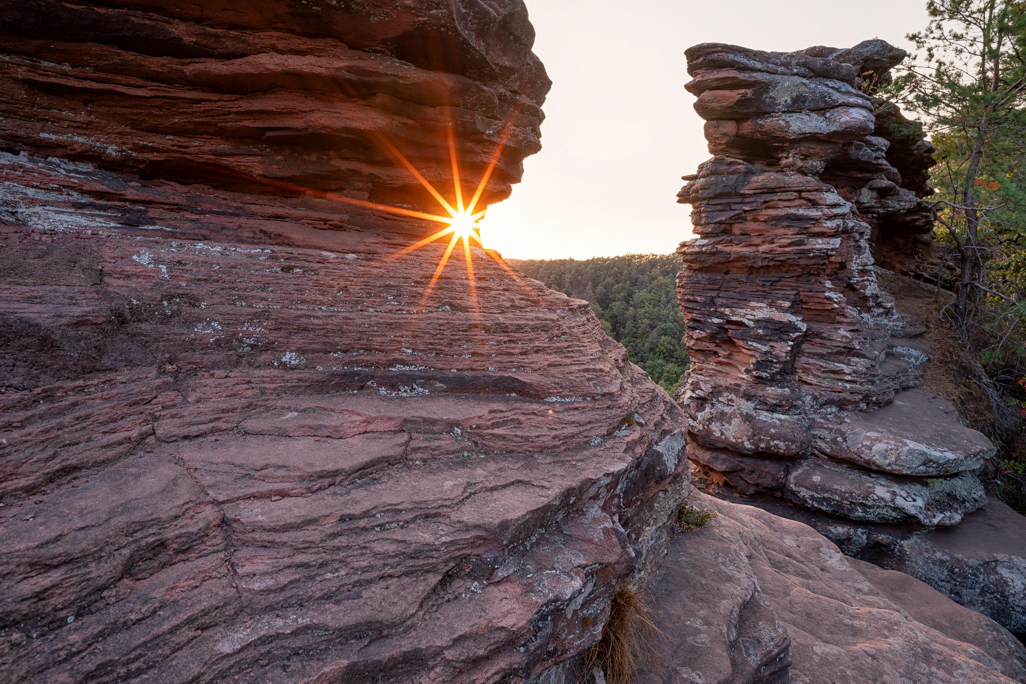 Sonnenstern am Sandstein