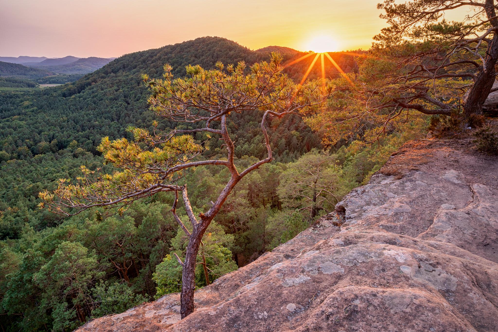 Rötzenfels - Sonnenstern am Abend