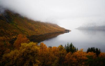 Lofoten fotografieren – neue Auflage inkl. Senja